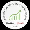 Selo Deloitte - As PMEs que mais crescem no Brasil
